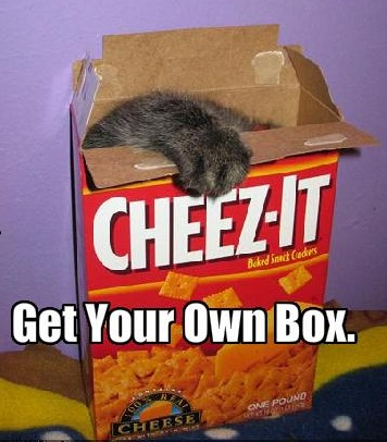 funny-pictures-cat-has-his-own-box-of-cheese-crackers