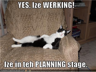 funny-pictures-cat-is-planning-to-work